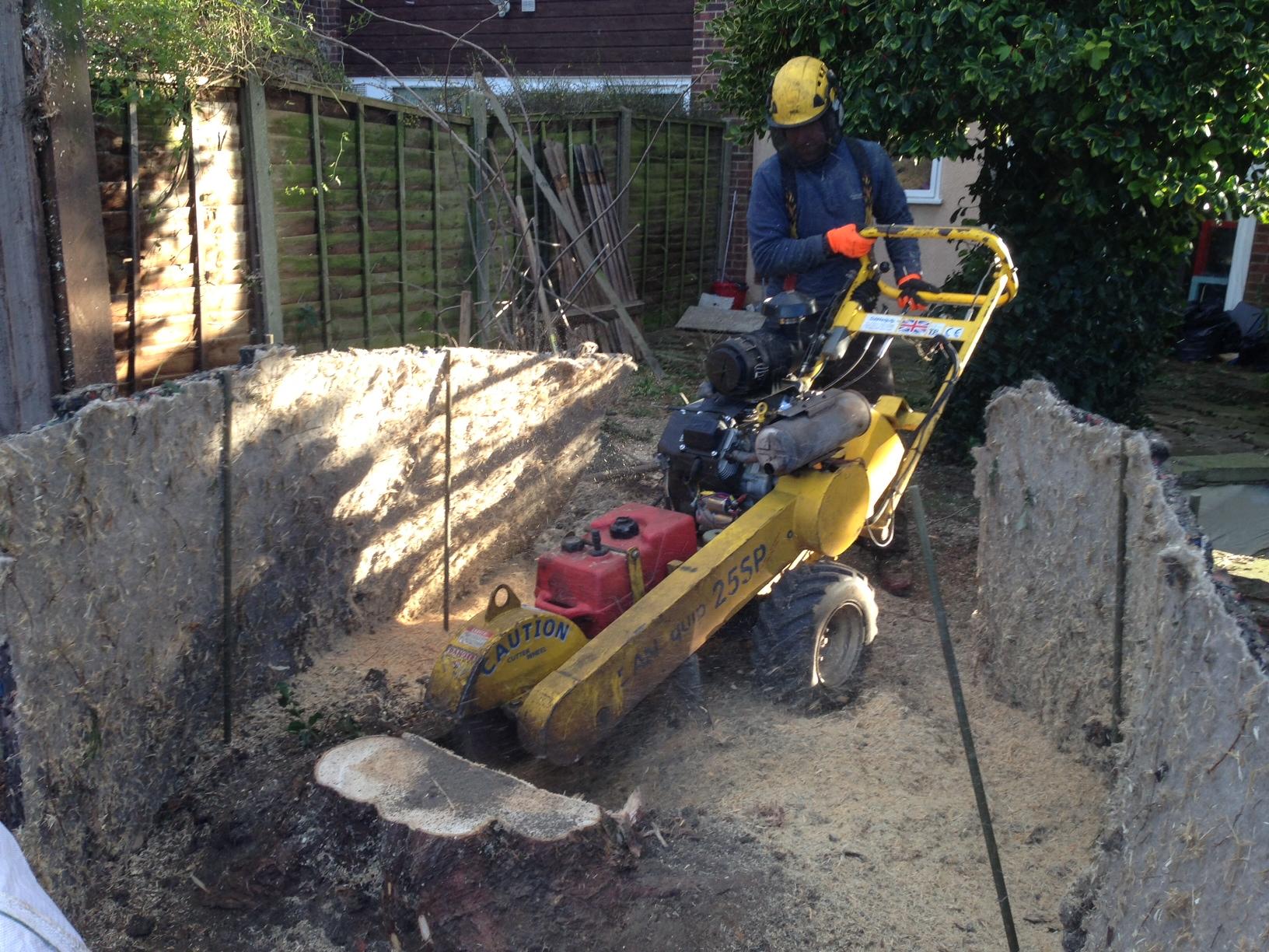 stump grinding domestic